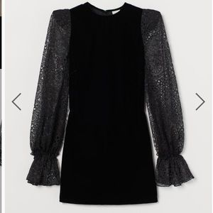 H&M x Vampires Wife Lace Sleeve Velvet mini dress